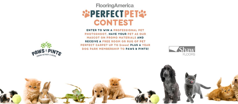 Buddy S Flooring Carpet One Carpet Vidalondon